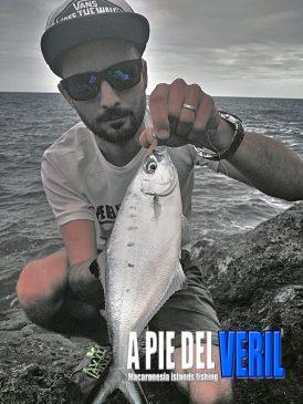 Palometa Vinilo Rockfishing- SPARIDAE