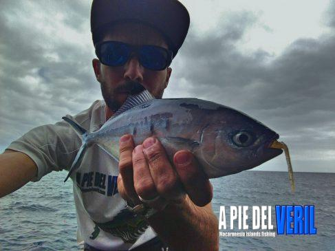 vinilo para Rockfishing Sparidae