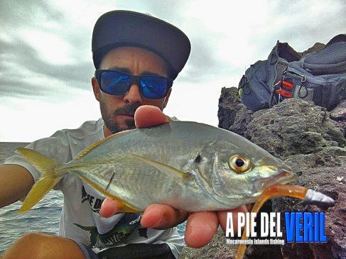 Jurel Vinilo Rockfishing- SPARIDAE